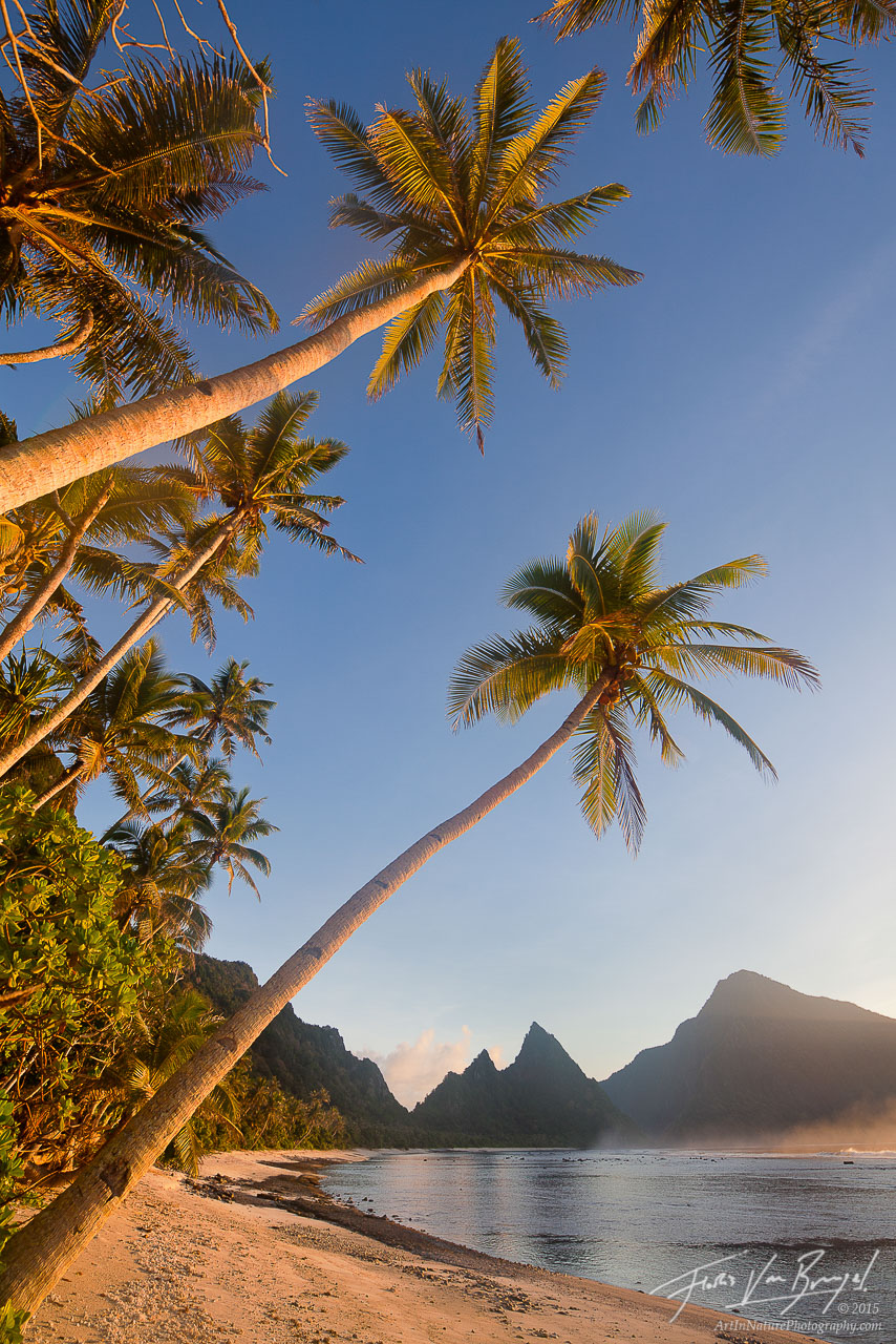 Palm Tree Beach Paradise, Ofu, American Samoa, photo