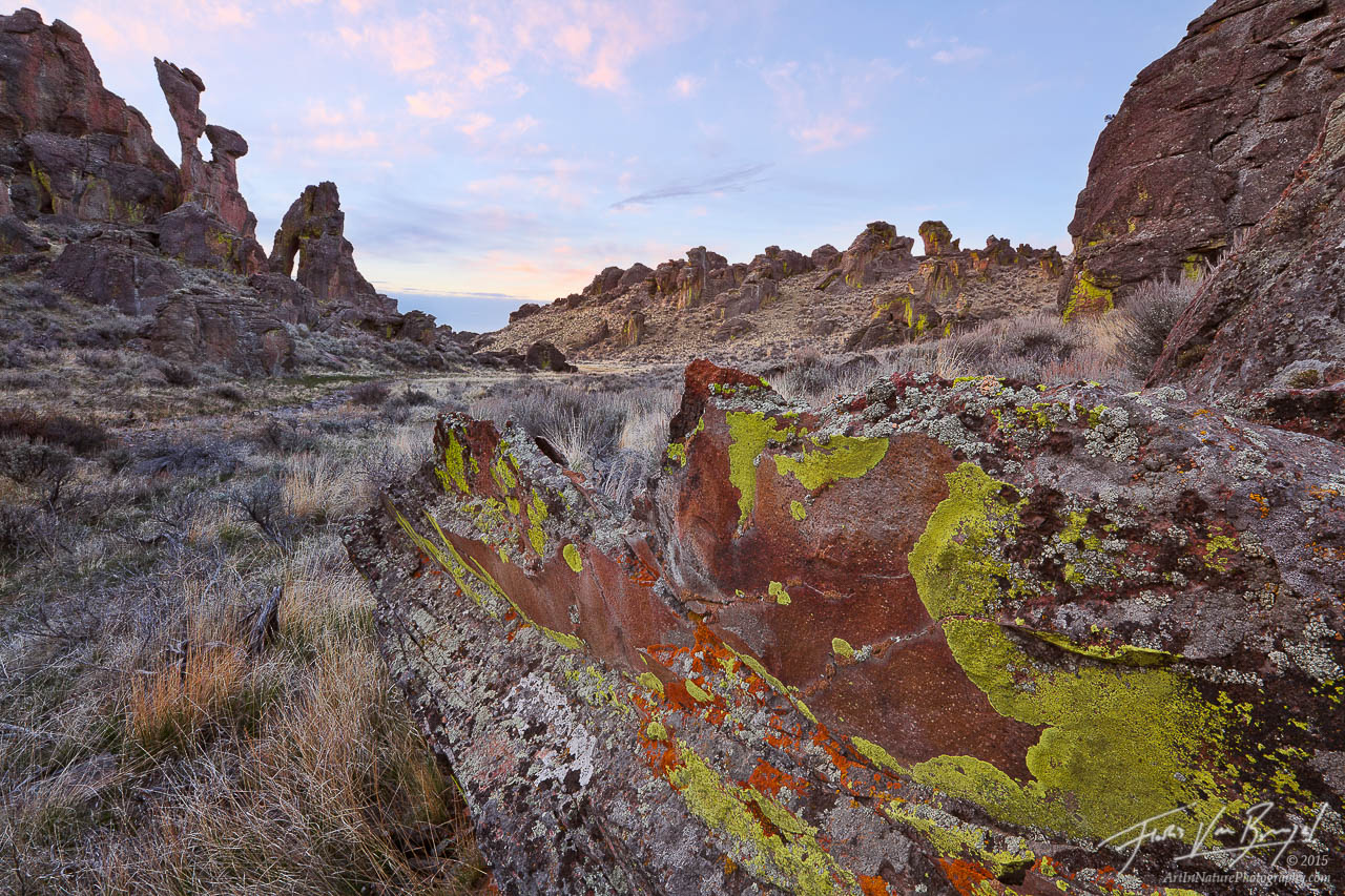 Colorful Lichens and Rhyolite Formations, Bennett Hills, Idaho, photo