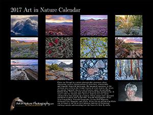 2017 Calendar by Floris van Breugel