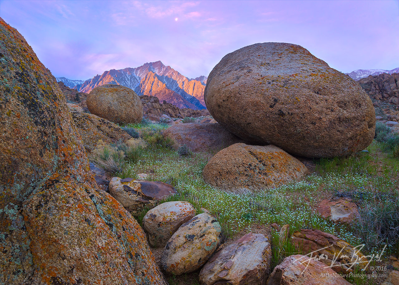 Granite Boulders, Alabama Hills, California, photo
