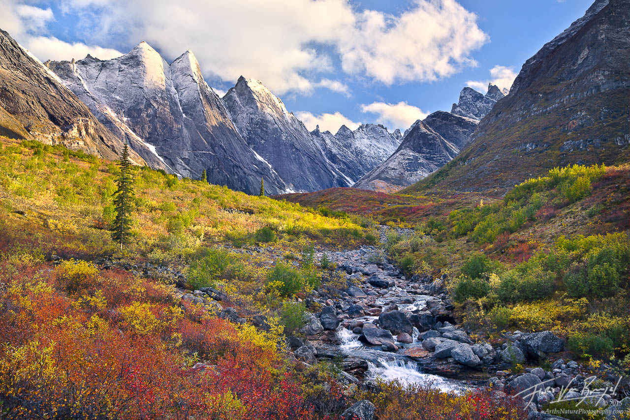 Autumn Color in the Arrigetch Peaks, Brooks Range, Alaska, photo