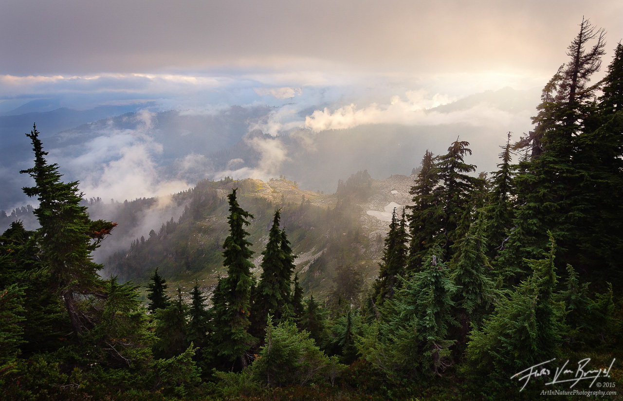 Mist, North Cascades, Washington, photo