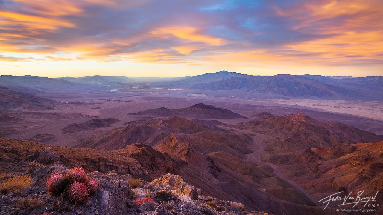 View of Death Valley, Barrel Cactus, California, panorama, photo