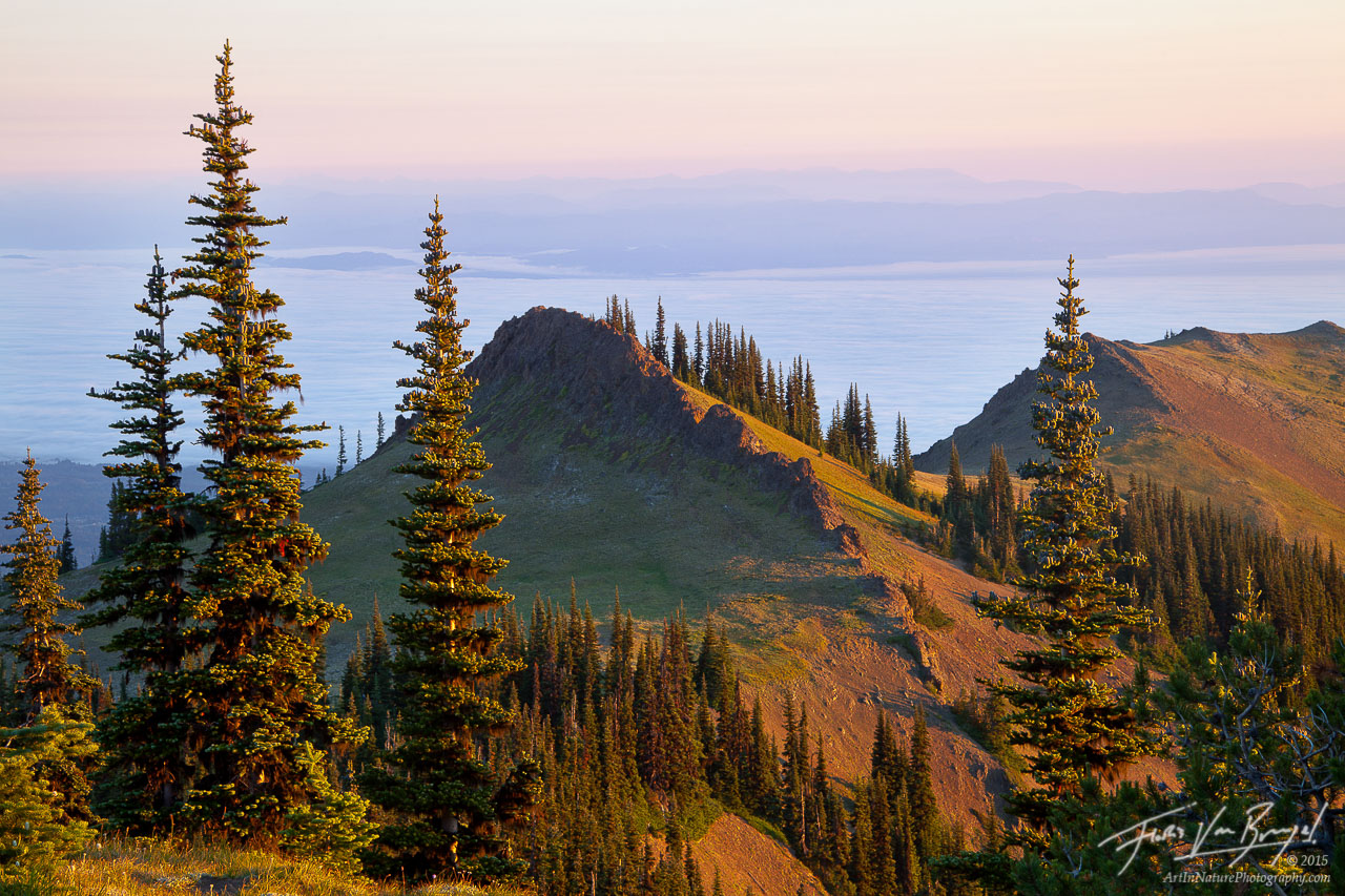 Deer Park, Olympic National Park, Washington, photo