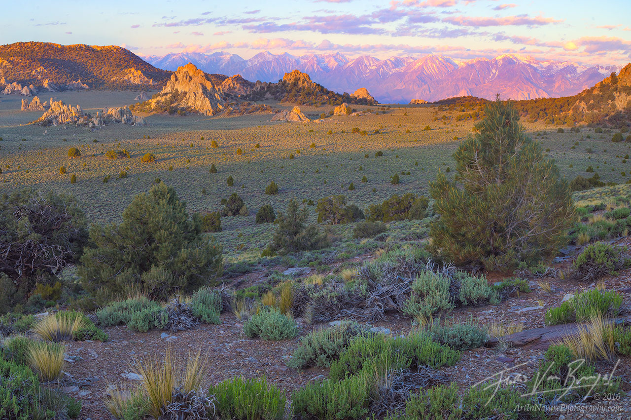 Inyo Mountains, Sierra Nevada, Sage and Pinyon, photo