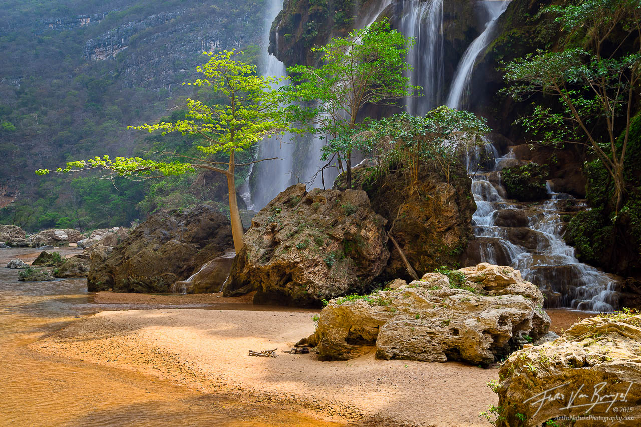Selva el Ocote, Waterfall, Beaches, photo