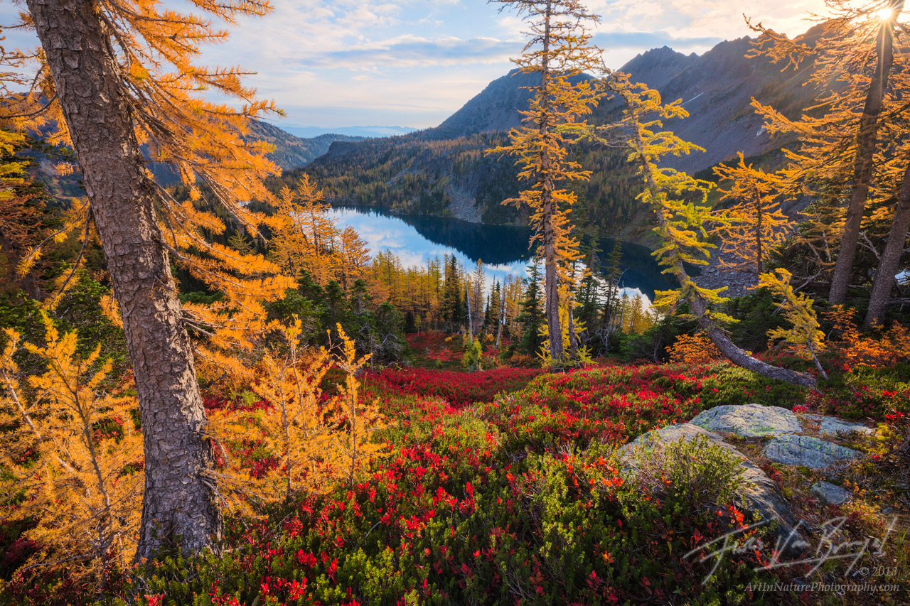 Cascades, Autumn, Larches, photo
