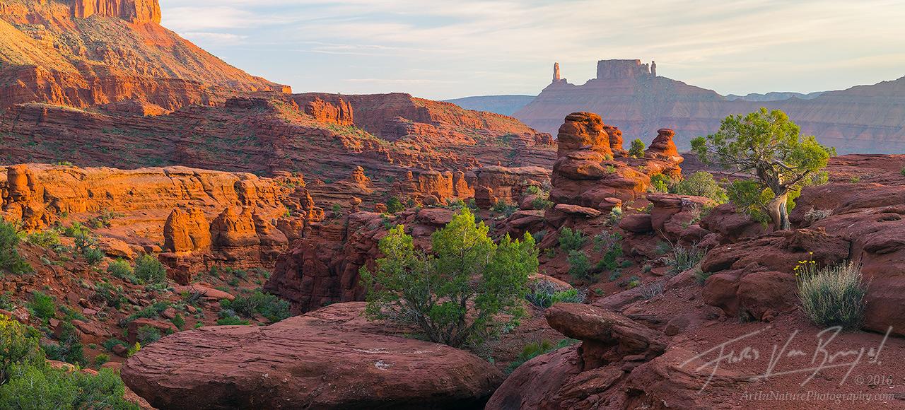 Wild Zen Garden, Moab, Utah, photo