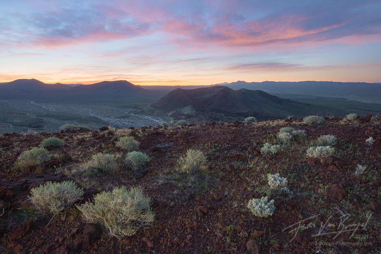 Cinder Cones, Mojave Desert, California, photo