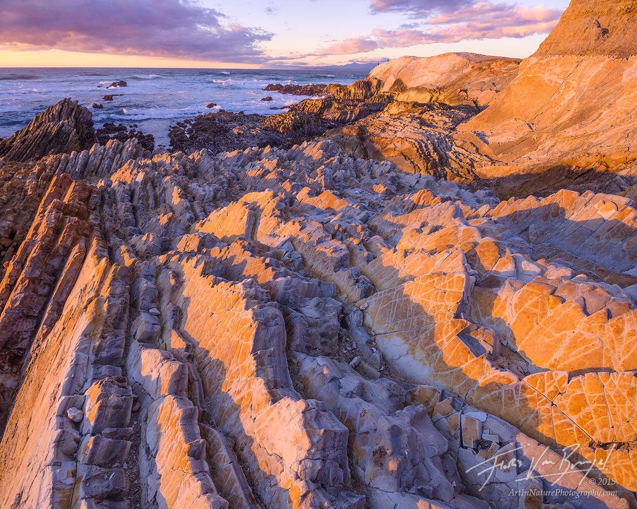 Montaña de Oro State Park, Coast, California, photo