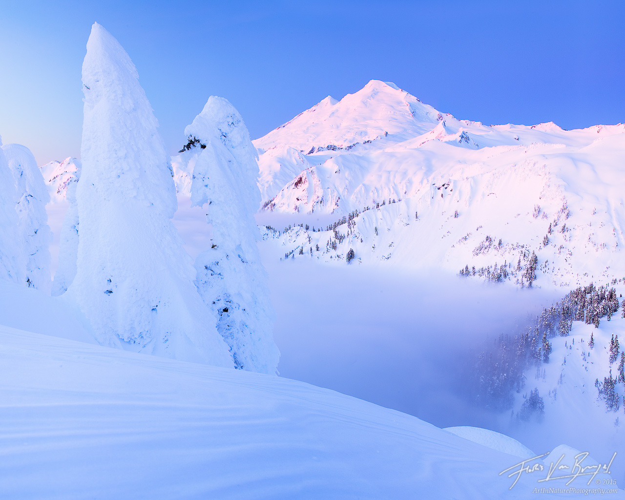 Mount Baker from Artist Point, Snowy Winter, Washington, photo