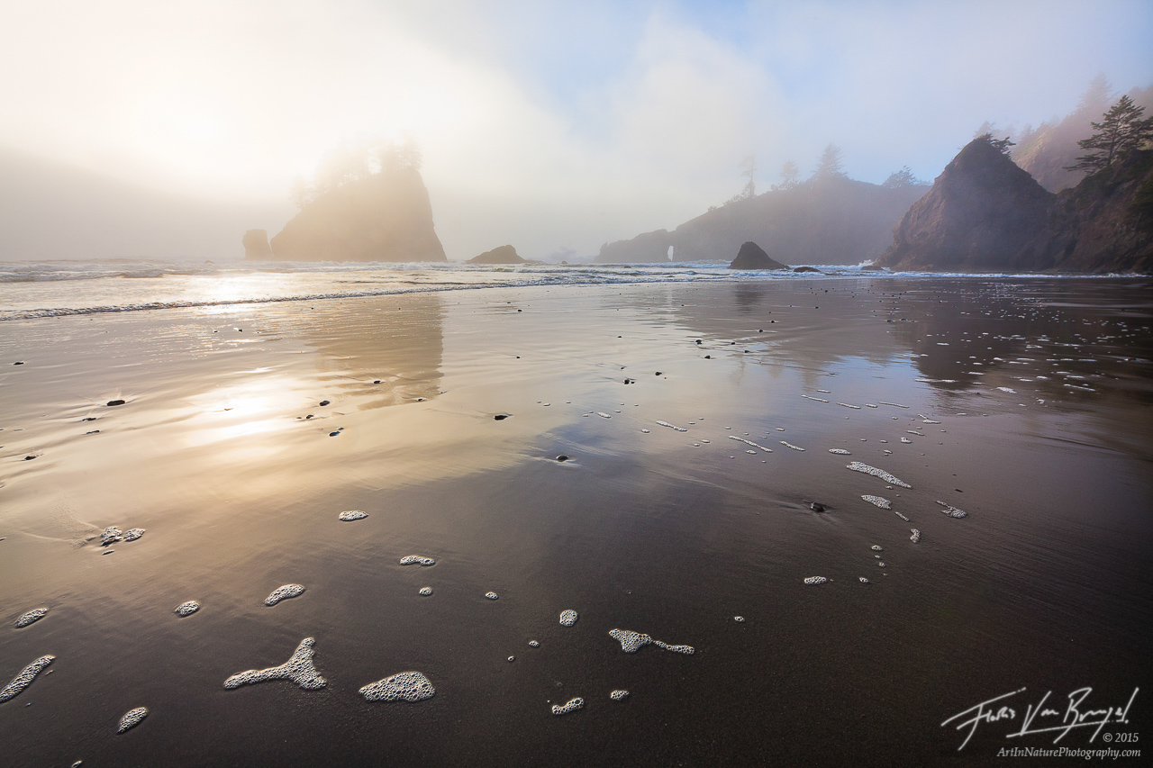 Second Beach, Mist, Olympic National Park, photo