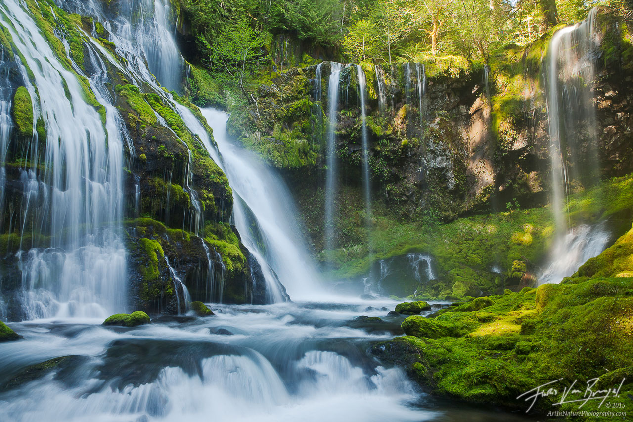Waterfall Paradise, Gifford Pinchot, Washington, photo