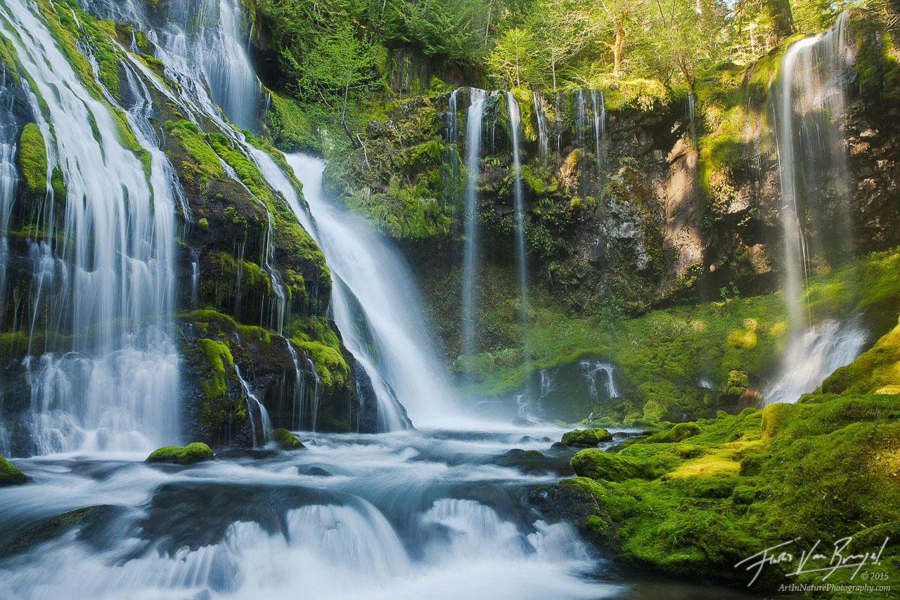 Waterfall Paradise, Gifford Pinchot, Washington, photo