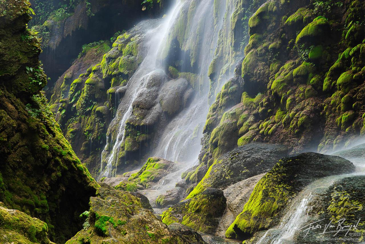 Mossy Cascades, Rio la Venta, Chiapas , photo