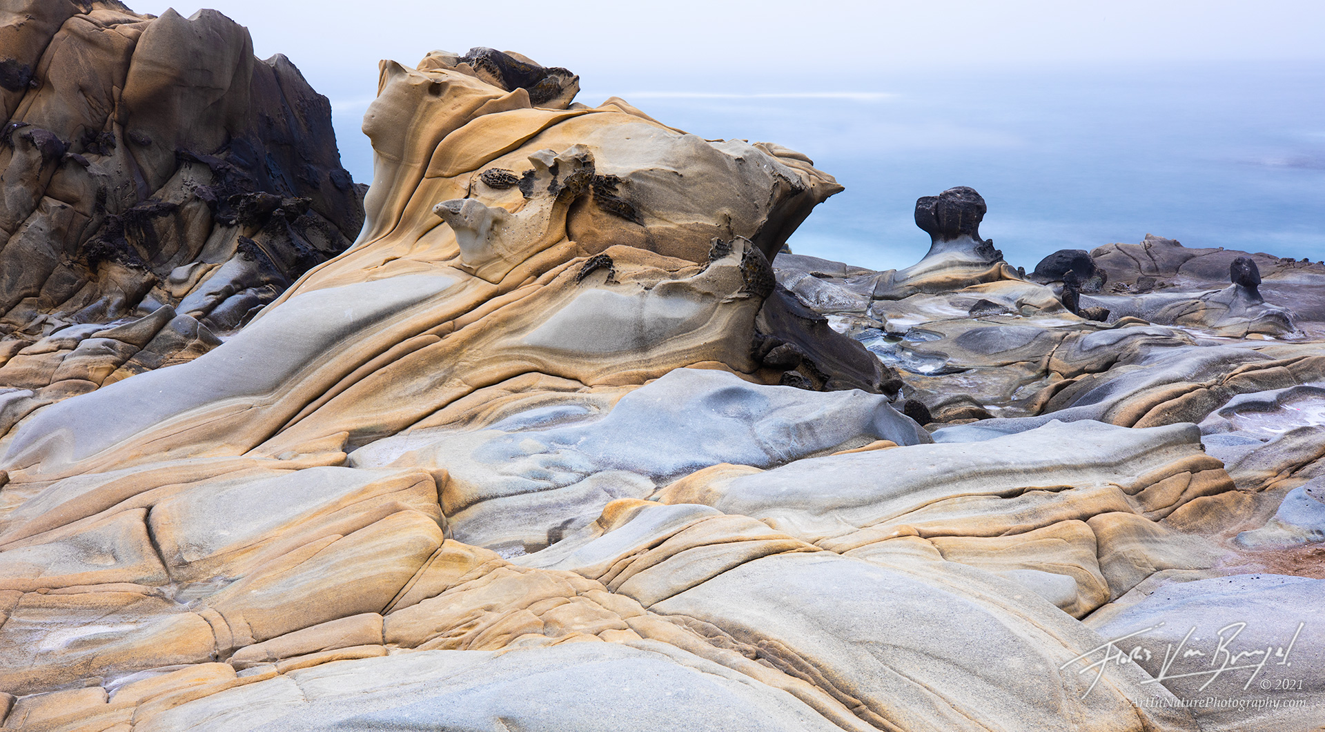 Salt Point State Park, Coast, Sandstone