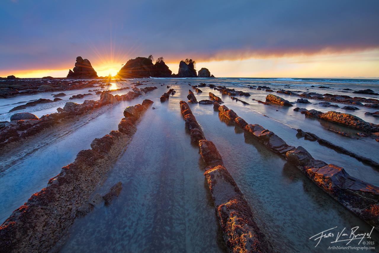 Shi Shi Beach, Olympic National Park, Washington, photo