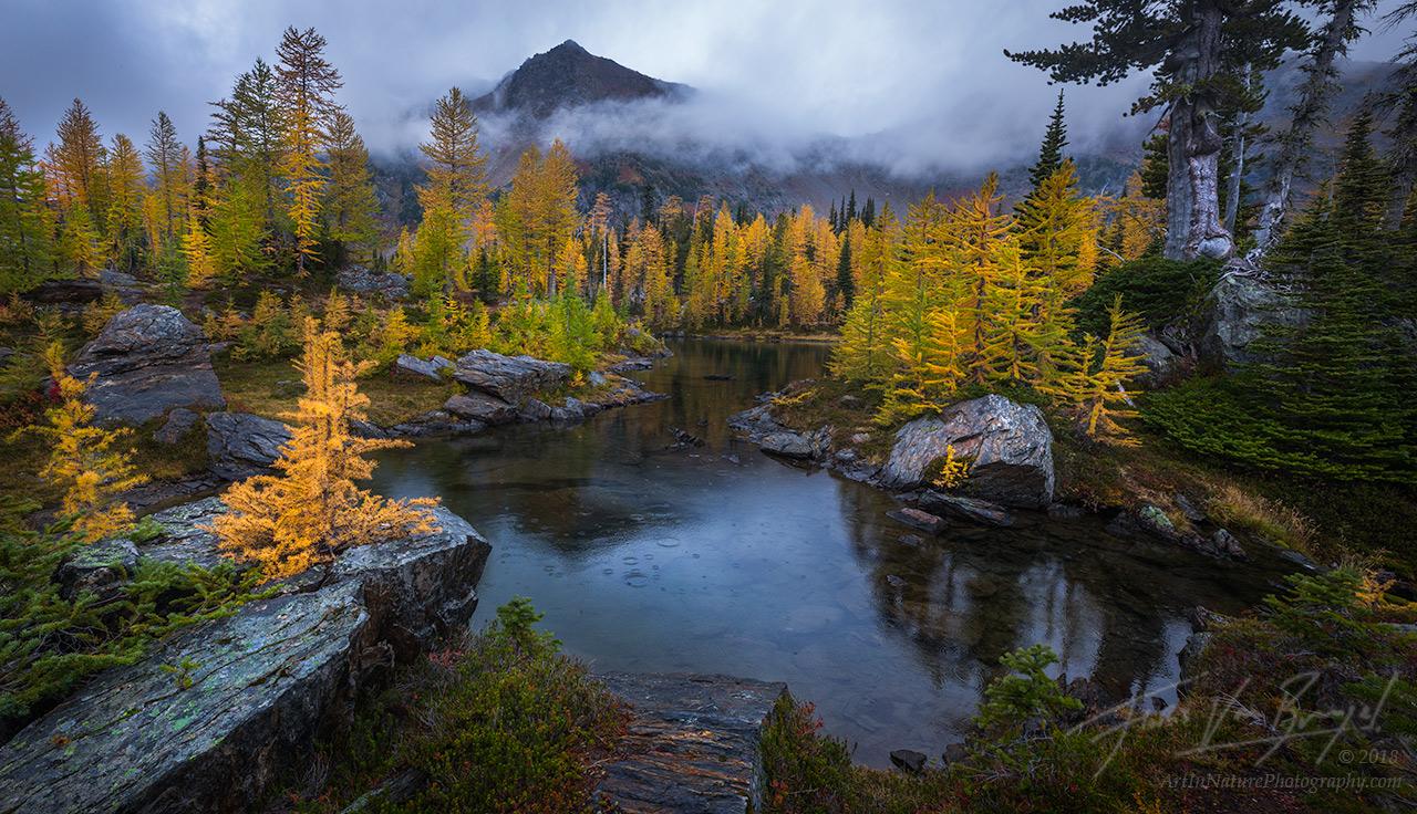 Cascades, Autumn, Rain