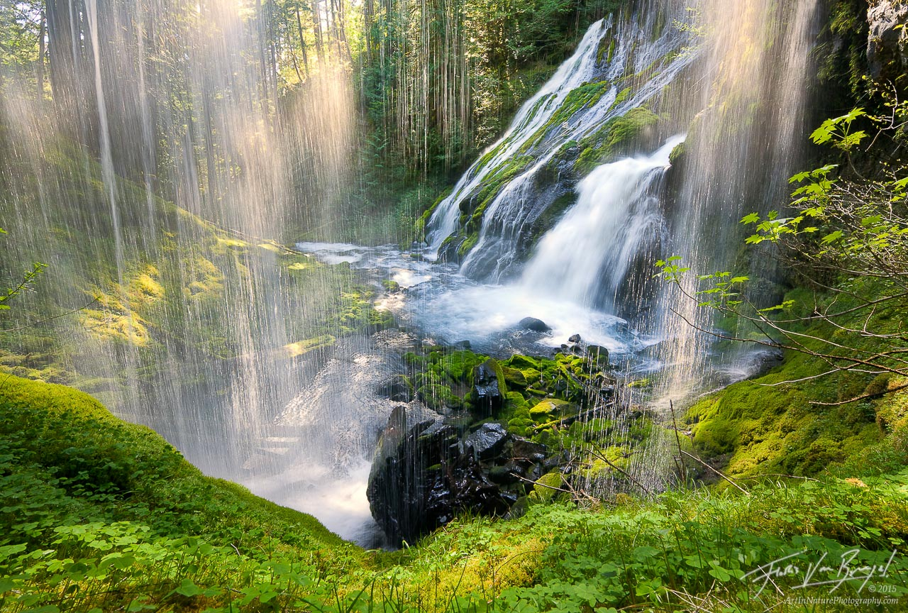 Waterfall Sparkles in Sunlight, Gifford Pinchot, Washington , photo