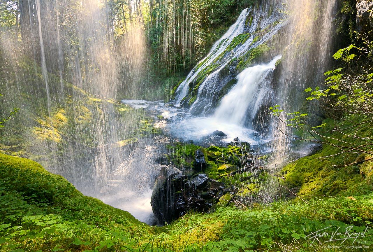 Waterfall Sparkles in Sunlight, Gifford Pinchot, Washington , photo